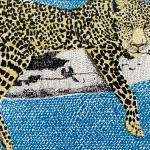 L is for Leopard 5