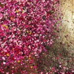 Pink Cherry Blossom Forever close