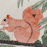 S is for Squirrel 2