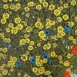 Summer Wildflower 3