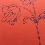 Ellen Williams Anemone I Wychwood Art close up stem
