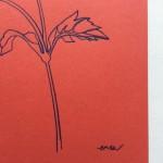 Ellen Williams Anemone I Wychwood Art signature