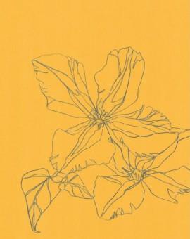 Ellen Williams Clematis III Wychwood Art