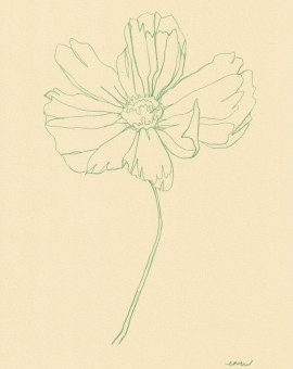 Ellen Williams Cosmos III Wychwood Art