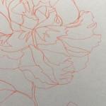 Ellen Williams Peony I Wychwood Art close up petal