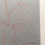 Ellen Williams Peony I Wychwood Art signature