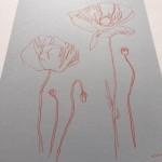 Ellen Williams Poppy II Wychwood Art side view