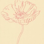 Ellen Williams Poppy IIV Wychwood Art