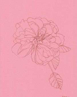 Ellen Williams Rose VII Wychwood Art