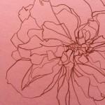Ellen Williams Rose VII Wychwood Art close up
