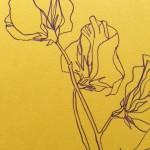 Ellen Williams Sweet Pea I Wychwood Art close up flower