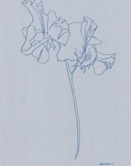 Ellen Williams Sweet Pea III Wychwood Art
