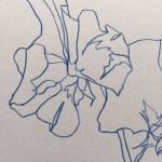 Ellen Williams Sweet Pea III Wychwood Art close up