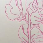 Ellen Williams Sweet Pea VII Wychwood Art close up