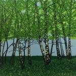 Jennifer Jokhoo Summer birches