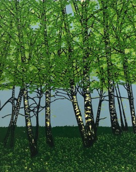 Jennifer Jokhoo Summer birches