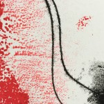 Mary Knowland Poppy16 Original Monoprint Detail
