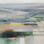 Rachel Cronin Field Lines Close Up