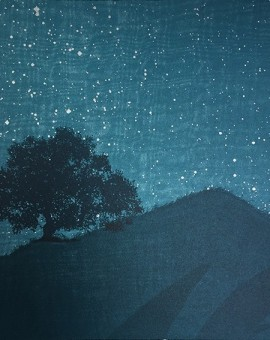 STARRY NIGHT II(1)