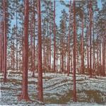 SWEDISH PINES MINI-PRINT 22X22CM(1)