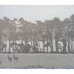 Small long print Mendip Hinds