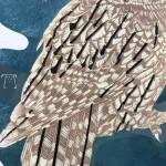 Yule Emma Swift Kirkman Close up owl tail