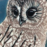 Yule Emma Swift Kirkman close up owl face