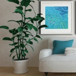 wild swim. Gordon Hunt. Limited edition print. in-situ