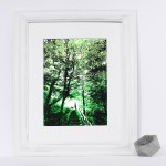 woodland_walks_framed_trees_dog_walking_green_screenprint_katie_edwards_illustration_art