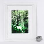 woodland_walks_framed_trees_dog_walking_green_screenprint_katie_edwards_illustration_art