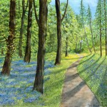Jane Peart Bluebell wood  Wychwood Art1