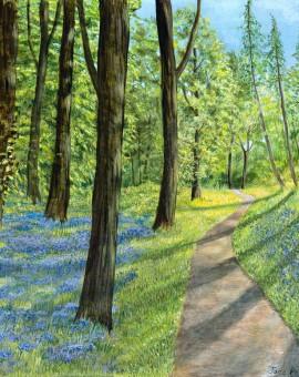 Jane Peart Bluebell wood  Wychwood Art1