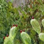 Jane Peart Frigiliana detail 1Wychwood Art1