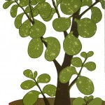 Kerry Day Money Tree