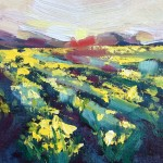Rachel Painter – Wings Of Dawn Study – Yellow Field Daffodil – Cornwall- Wychwood Art