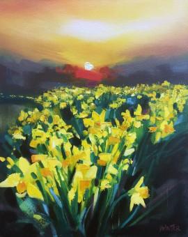 Rachel-Painter---Your-Word-Is-A-Lamp-To-My-Feet---Yello-Daffodil-Field---Cornwall- Wychwood Art