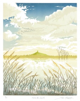 Steve Manning-Across the Levels-Wychwood Art. jpeg (9)