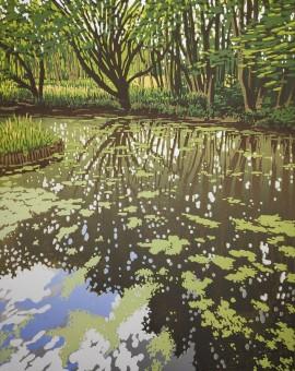 Summer Woodland Pond - Alexandra Buckle 2mb
