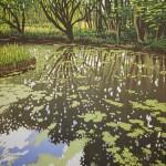 Summer Woodland Pond – Alexandra Buckle 2mb