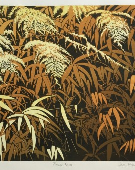 Susan_Noble_Autumn_Ferns_Wychwood_Art_Pteridomania