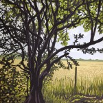 Woodland Edge – Alexandra Buckle 2mb
