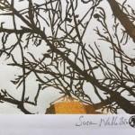 Shinrin yoku 1 version 2 Susan Noble signature