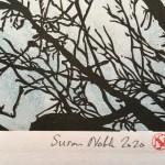 Shinrin yoku 1 version 3 Susan Noble signature