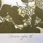Shinrin yoku 2 version 1 Susan Noble Title – Copy