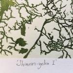 Shinrin yoku I v1 Susan Noble title 2mb