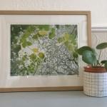 Shinrin yoku Susan Noble framed with plant