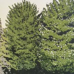 Susan Noble Gisborough Priory close up of trees small