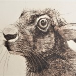 Will Taylor  Archimedes Hare  Crop3  Wychwood Art