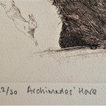 Will Taylor  Archimedes Hare  Edition  Wychwood Art