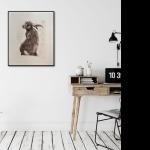 Will Taylor  Archimedes Hare  Insitu  Wychwood Art